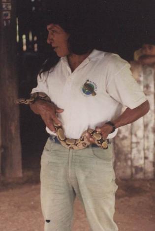 Boa c. constrictor Ecuador